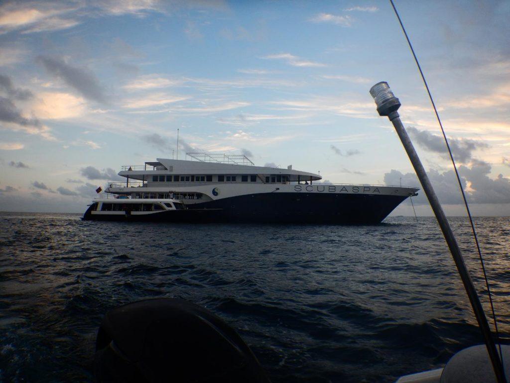 Tauchreise Malediven