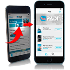 PADI Touch PAD Library